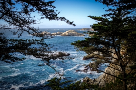 Point Lobos from Highway 1